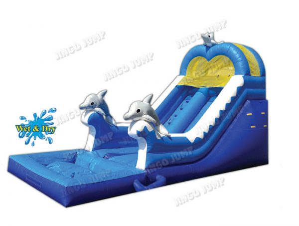 16 FT Dolphin Wet & Dry Slide